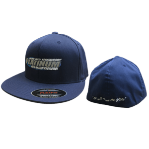 Platinum Fitted Hat