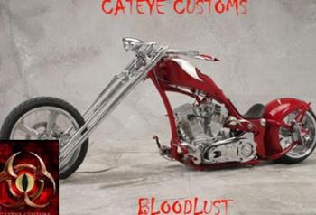custompictureslide7